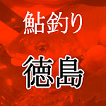 徳島鮎釣り解禁