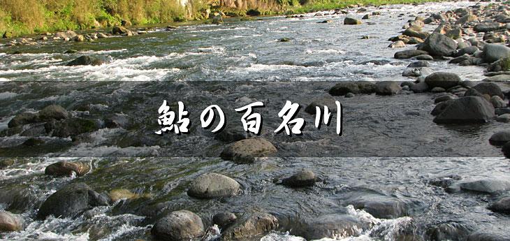 天然アユの遡上する川