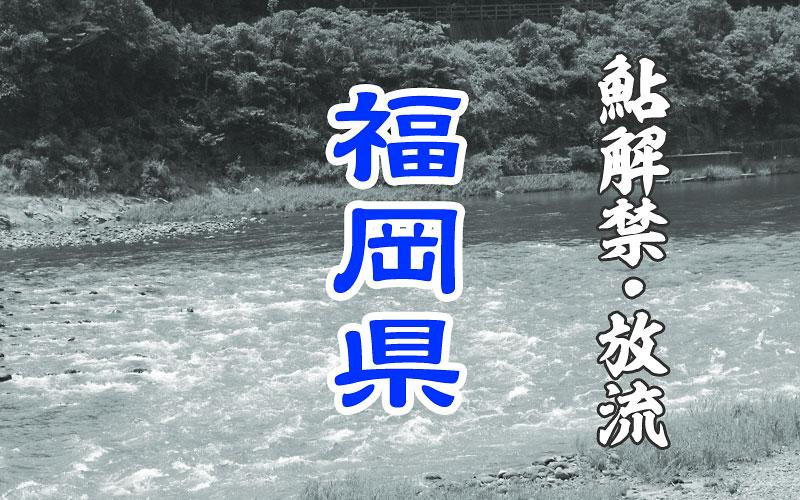 福岡県 鮎の友釣り解禁