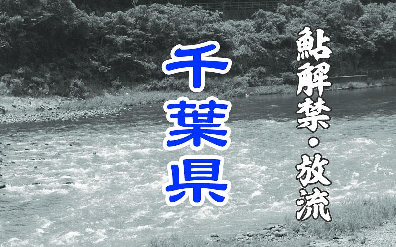 千葉県 鮎釣り解禁