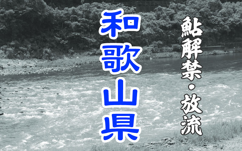和歌山県の鮎解禁