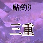 三重鮎釣り解禁