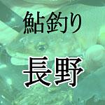 長野鮎釣り解禁