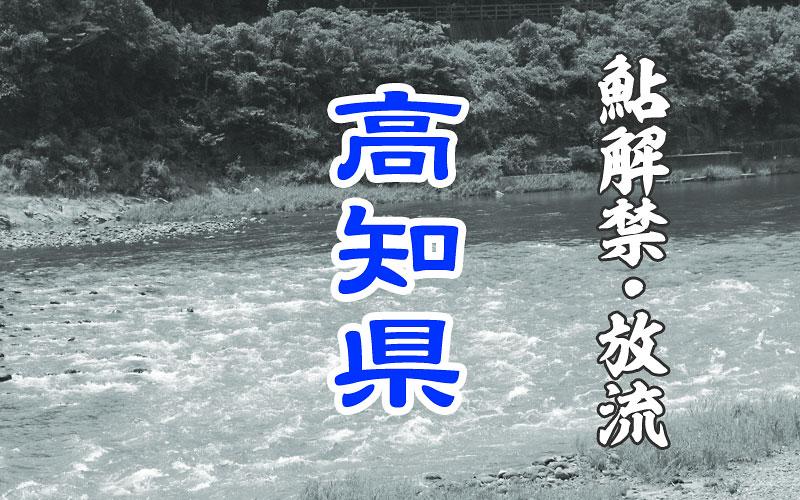 高知県の鮎解禁