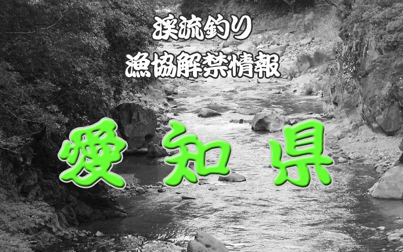 愛知 渓流釣り解禁