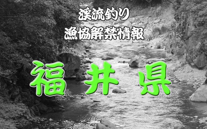 福井県 渓流釣り解禁