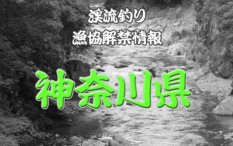 神奈川県の渓流釣り解禁