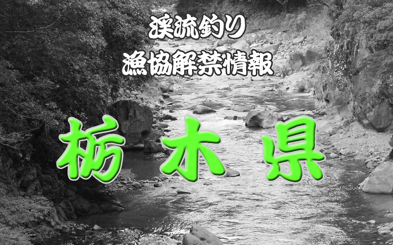 栃木県の渓流釣り解禁