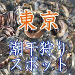 東京都の潮干狩りスポット