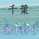 千葉県の潮干狩りスポット紹介