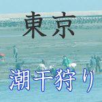 東京の潮干狩りスポット紹介