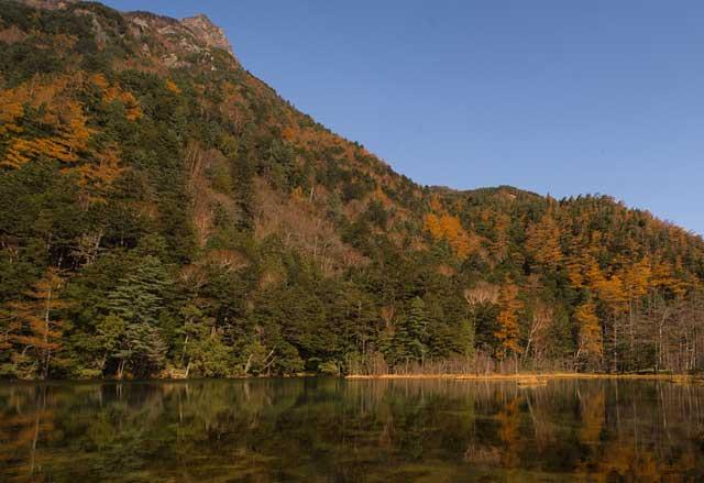 秋の池イメージ画像