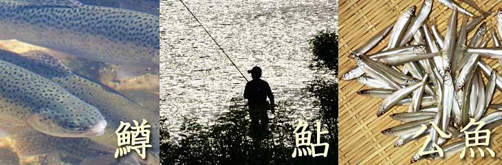 淡水釣り場手引