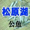 松原湖のワカサギ釣り