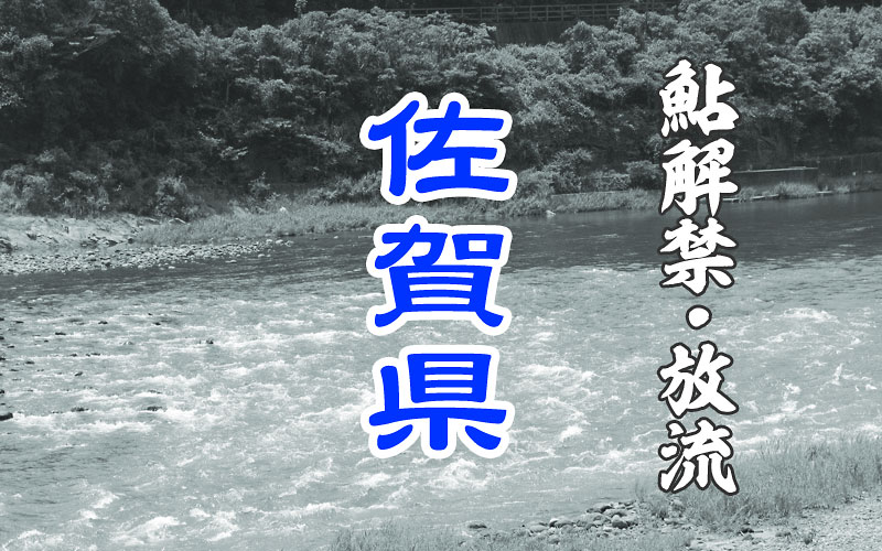 佐賀の鮎友釣り解禁