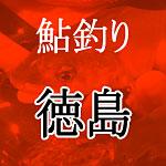 徳島の鮎釣り解禁
