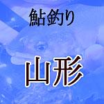山形県の鮎釣り