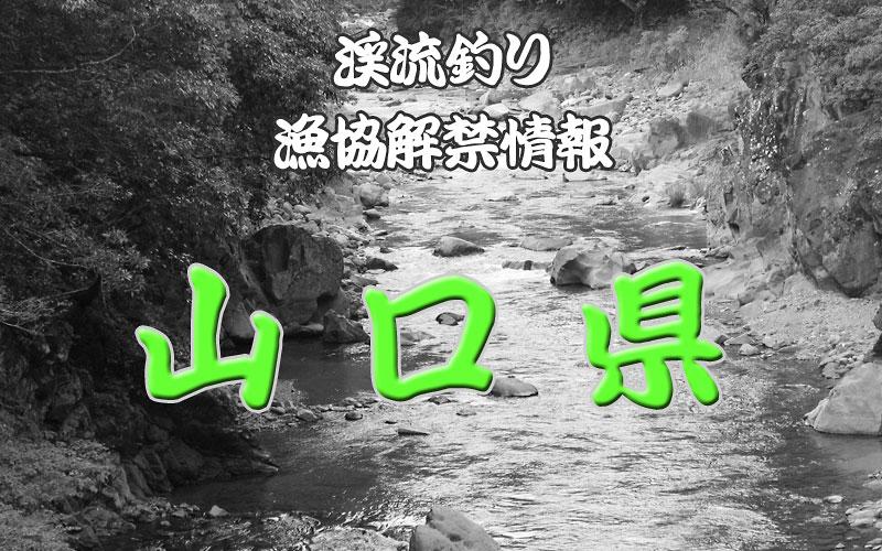 山口県 渓流釣り解禁